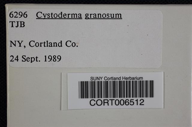 Image of Cystoderma granosum