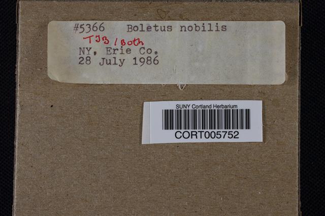 Boletus nobilis